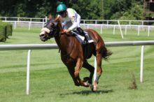 競馬で投資運用を始める「競馬投資の検証日記」
