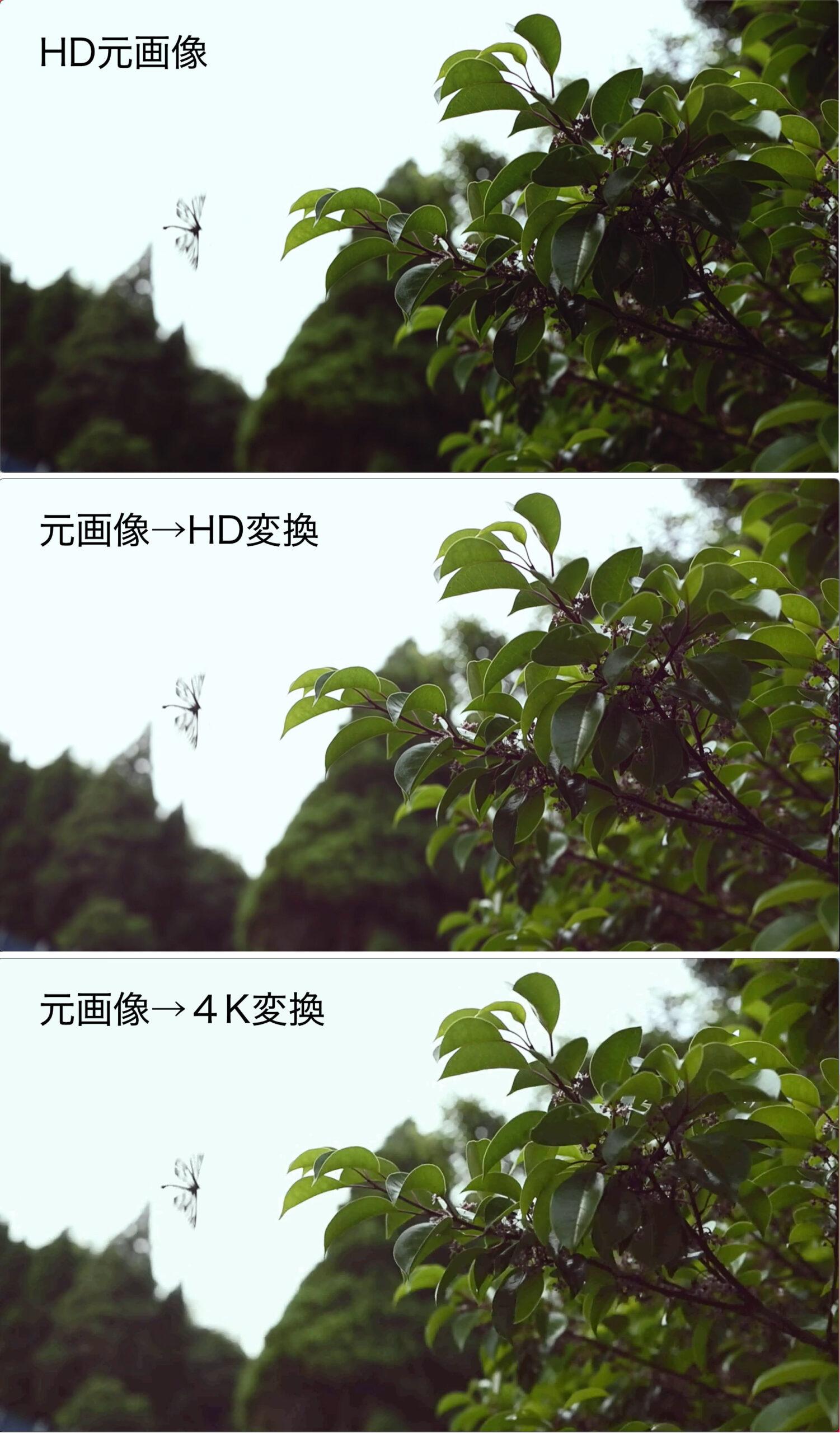 HD Video Converter Factory Pro 動画 4K/HD変換後の劣化比較画像